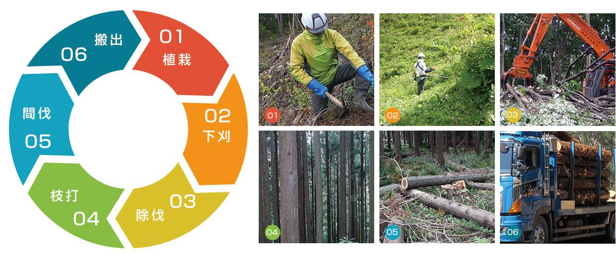 西村林業の山林受託管理