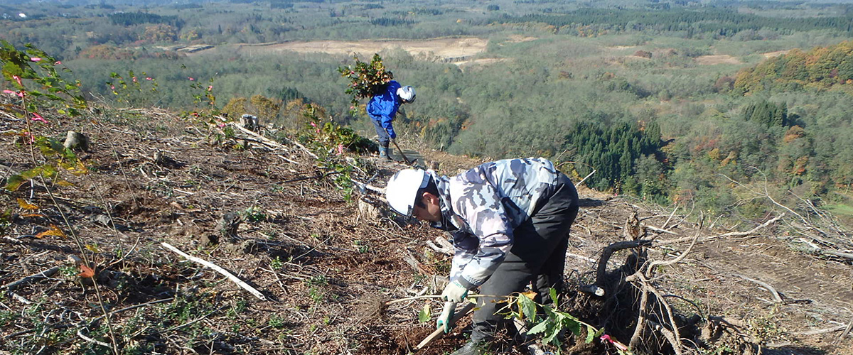 秋田県意欲と能力のある林業経営者